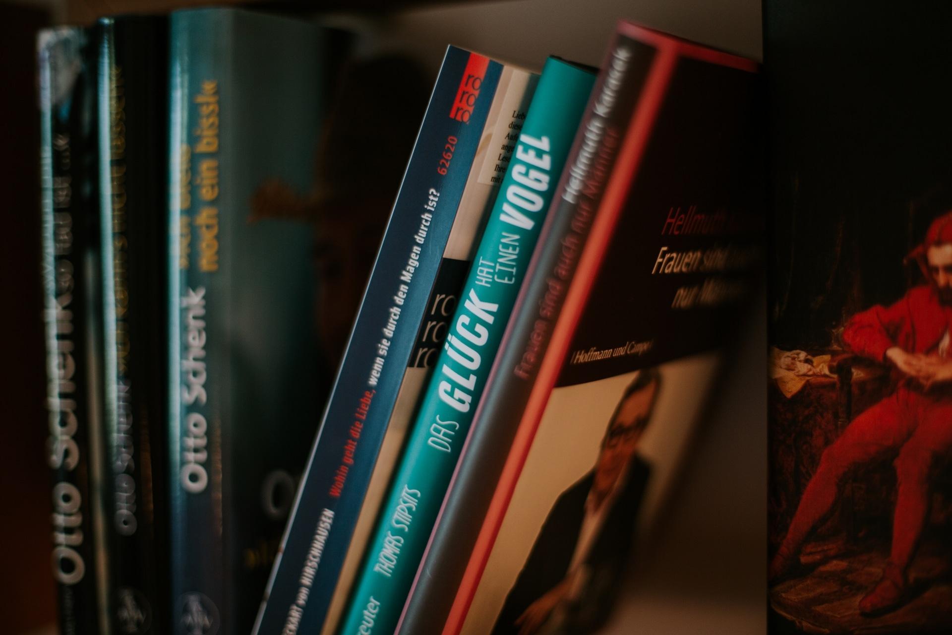 Bücher in der Schmunzelsuite der Wasnerin
